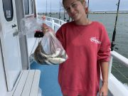 Miss Oregon Inlet Head Boat Fishing, Sunny Sunday
