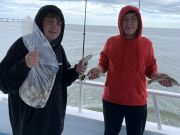 Miss Oregon Inlet Head Boat Fishing, Hooked Again